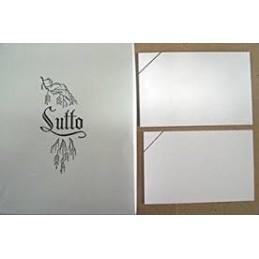 BIGLIETTO E BUSTA F.TO 9 100/100 LUTTO